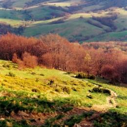 Ciekawe miejsca do odwiedzenia w Bieszczadach